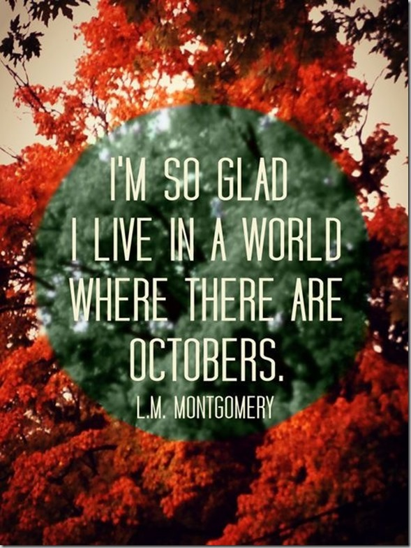 Delightful 10 Quotes To Get You In The Fall Spirit