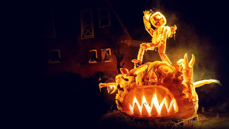 Watch Outrageous Pumpkins live