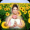 Sunflower Photo Frame APK
