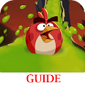 Guide for Angry Birds 2