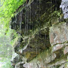 by Lina Turoci - Nature Up Close Water ( drip, droplet, waterfall, moss, rock )