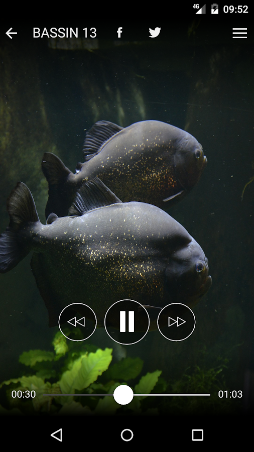 Audio Guide Aquarium de Lyon- screenshot