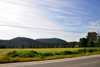 Photo: Heading up the Island Hwy along fields on Vancouver Island between Duncan and Ladysmith