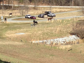 Photo: Many People Ride Horses on the Equestrian Trails