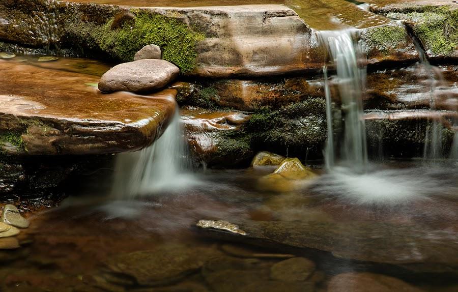 Kitchen's Creek 3 by Buddy Eleazer - Nature Up Close Water