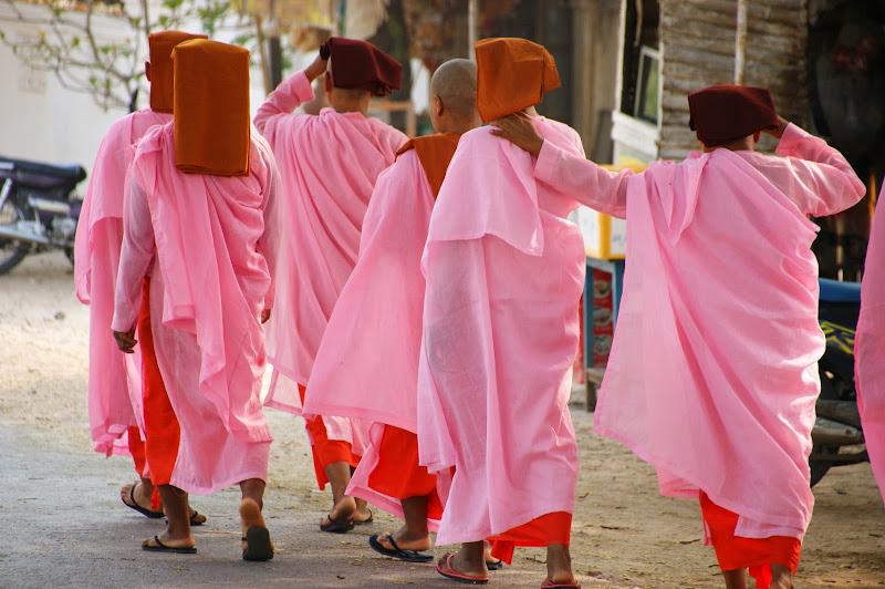Passeggiata....in rosa. di niro