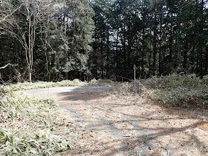 林道分岐に(右へ)