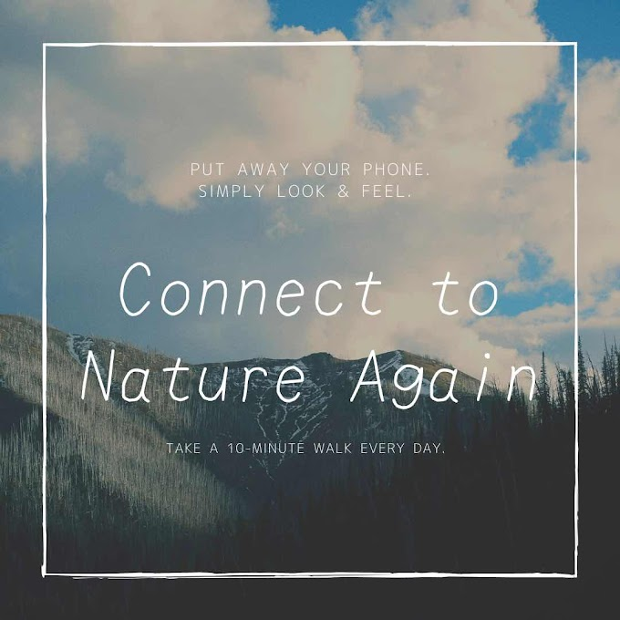 Connect to Nature Again: Take a 10-Minute Walk Every Day