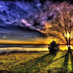 Buds by DE Grabenstein - Landscapes Sunsets & Sunrises ( sunset, trees, lake, nebraska )