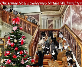 Buon Natale Thrissur.Bilder Buon Natale Frismarketingadvies