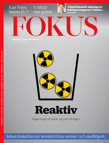 Fokus #41/21