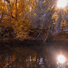 Autumn's Reflex by Gabriel Cabrera - Landscapes Sunsets & Sunrises ( autumn, sunlight, landscapes, reflex, reflection, reflections, mirror )