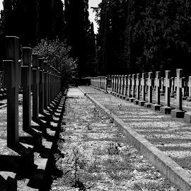 by OL JA - City,  Street & Park  Cemeteries