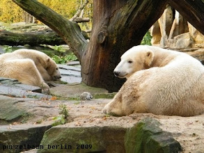Photo: Knut und Gianna relaxen :-)