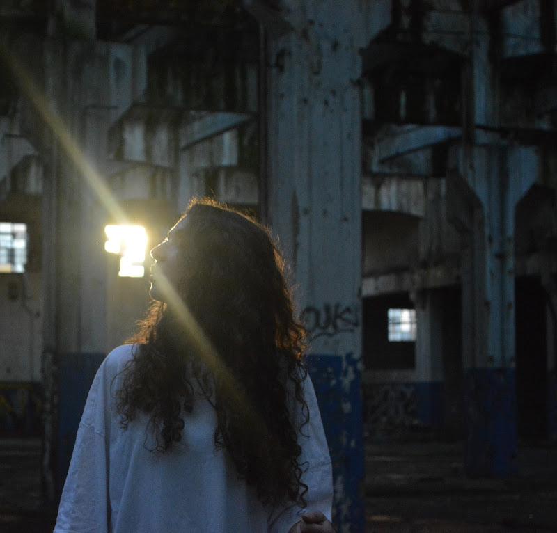 The light of consciousness di pavonix