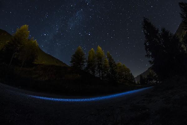 La notte Blu di gattopisa