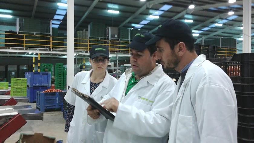 Técnicos vinculados al Colegio de Ingenieros Agrícolas analizan una producción ecológica en un almacén en la provincia.