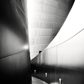 linear dimension by Jarka Vojtaššáková - Buildings & Architecture Architectural Detail ( gehry, abstract, corridor, architectural detail, architecture, black&white )
