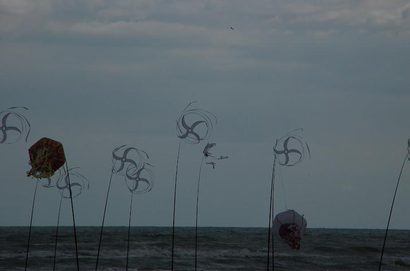 l'energia del vento di luchetto