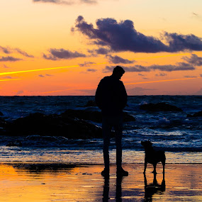 One Man And His Dog by Tony Simcock Eadie - People Portraits of Men ( silhouette, sunset, reflections, seascape, beach, landscape, dog, man, colours,  )
