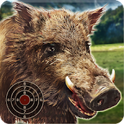 Wild Boar Target Shooting