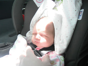 Photo: Our little passenger slept all the way home!
