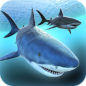 Sea Shark Adventure Game Free