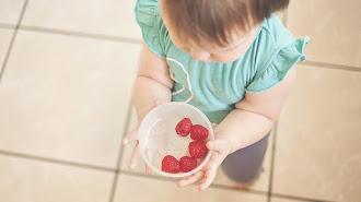 Los niños deben tener una alimentación saludable para poder aprender. En su menú no pueden faltar las verduras y frutas de temporada.