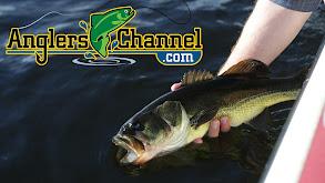 AnglersChannel Bass Wrap Up Show thumbnail