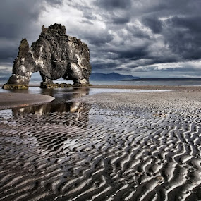 Hvítserkur by Bragi Ingibergsson - Landscapes Beaches ( iceland, nature, brin, hvítserkur, bragi j. ingibergsson, cliff, beach, landscape )
