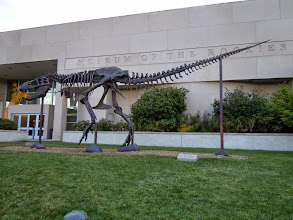 Photo: of note in Bozeman: the campus of Montana State University, and a rockin' museum of dinosaurs and gecko. They even had a planetarium show about icecube in the morning apparently!