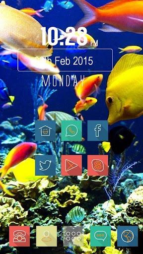 海洋中的热带鱼