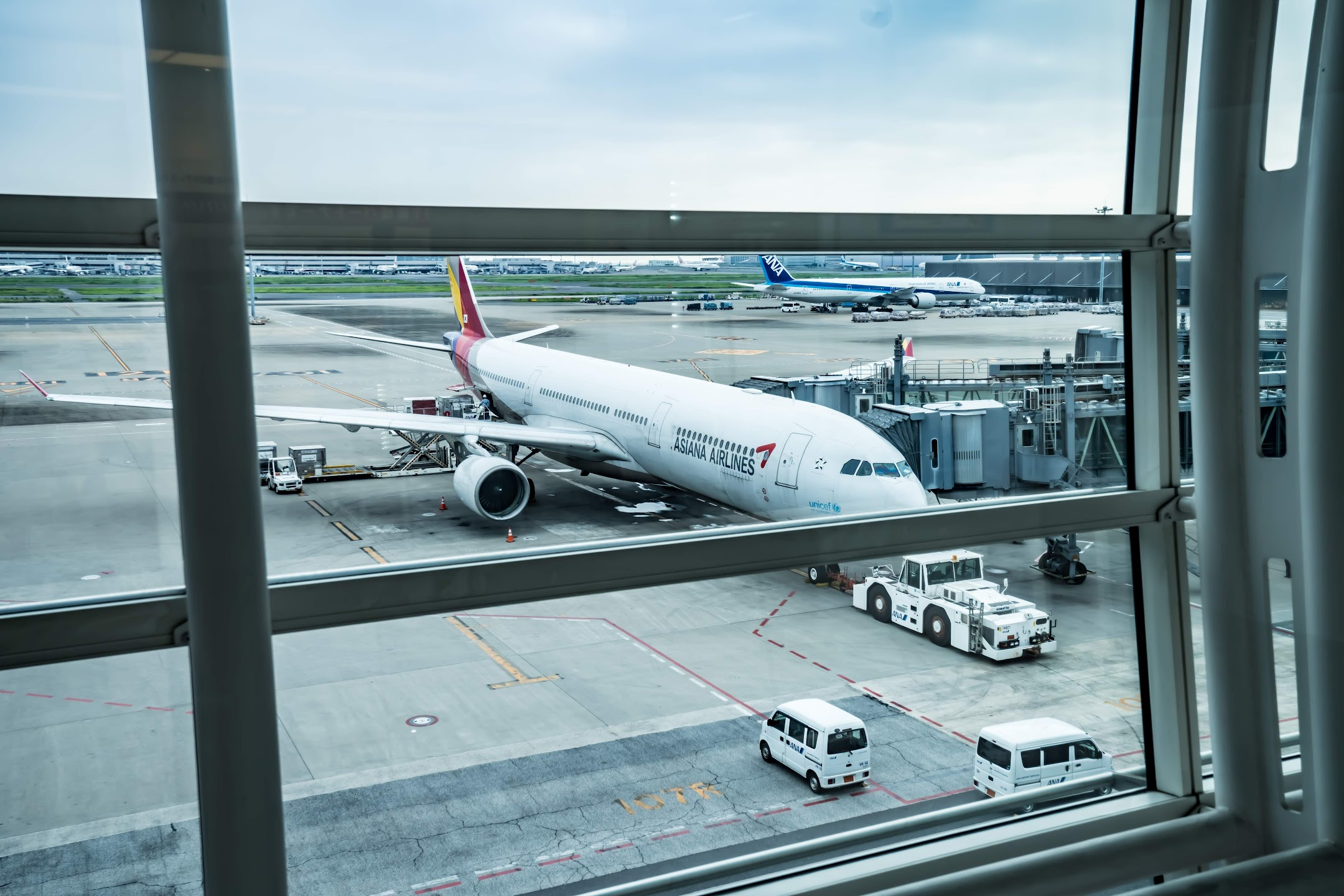 Haneda Airport Asiana Airlines2