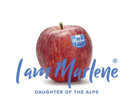 marlene appel