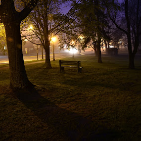 Solitude by Gabrielle Libby - City,  Street & Park  City Parks ( bench, park, grass, fog, trees, night )
