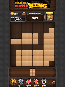 Block Puzzle King Mod Apk: Wood Block Puzzle 9
