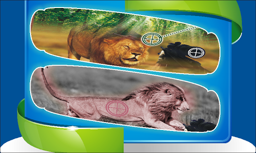 玩免費冒險APP|下載狮子狩猎3D app不用錢|硬是要APP