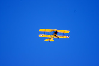 Photo: Vintage Wings Tiger Moth 4947 CF-ANN
