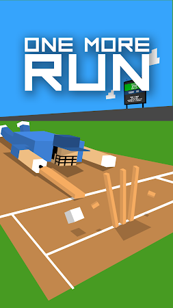 One More Run: Cricket Fever 1.62 screenshot 1716570