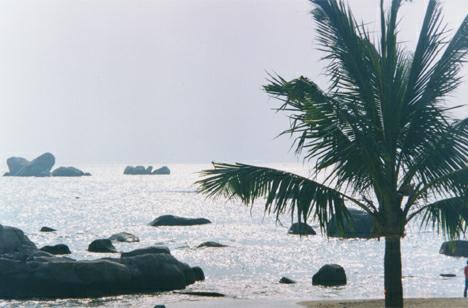20000129 海南环岛游 —— 三亚海口游记攻略 - 天外飞熊 - 天外飞熊