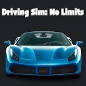 Driving Sim: No Limits icon