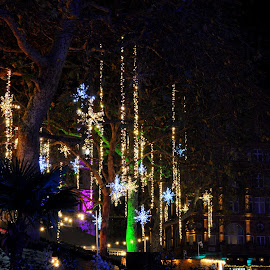 When the Stars Fell on Leicester Square by DJ Cockburn - Public Holidays Christmas ( london, britain, city, winter, holiday, uk, street, dark, season, cityscape, decoration, leicester square christmas market, england, electric light, star, illumination, festival, overhead, night, display, tree, leicester square, christmas, suspended, urban )