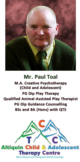 Mr. Paul Toal - M.A. Creative Psychotherapy (child and adolescent) and more.....