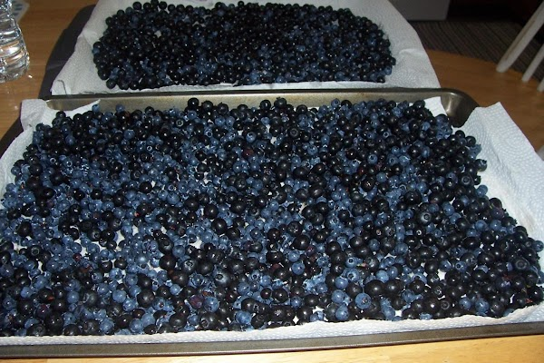 Fold in blueberries gently, 1/4 c in each cup about 2/3 full.  Bake...