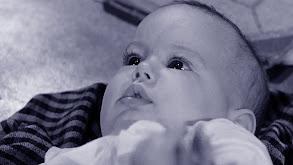 Wyatt Earp's Baby thumbnail