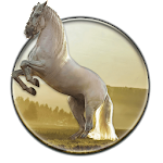 Running Horse HD Wallpaper Icon