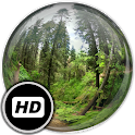 Panorama Wallpaper: Forest icon