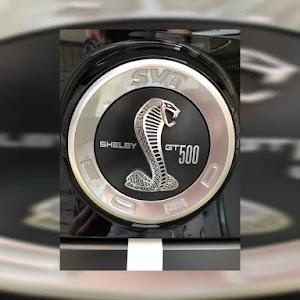 シェルビー  GT500のカスタム事例画像 blk_challengersrthellcatさんの2019年08月25日14:23の投稿