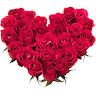 com.wastickerapps.wastickerappsflowers.wastickerappsroses.flowerstickers.colorit
