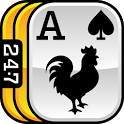 247 Solitaire + Freecell PRO icon